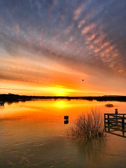 Pulborough sunrise (Peter Burnage) Tags: sunset sea sky sun nature water sunshine sunrise river nude flood arundel arun pulborough