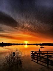 Pulborough sunrise (Peter Burnage) Tags: arundel sea arun river brooks pulborough sunset sunshine sunrise sun