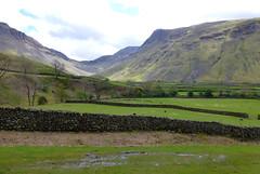 Wasdale Head, Lake District, UK (east med wanderer) Tags: england uk cumbria lakedistrict wasdalehead nationalpark meadows sheep
