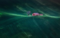 The Red Door (Andrea Rizzi photo) Tags: green agricolture tree landscape landscapephotography nature naturephotography rural ruralphotography marche italy italia flickrnature flickr colors colours door home collina light canoneos canonphotographers photo picture paesaggio photography winter shadow