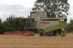 Claas Lexion 480 Combine Harvester cutting Spring Oats (1) (Shane Casey CK25) Tags: claas spring corn grain harvest combine cutting 480 oats harvester lexion harvest19 harvest2019 grain19 grain2019 corn2019 county ireland irish golden farm cork cereal straw crop crops dust cereals chaff tillage horse field work hp power earth farming working ground soil farmer agriculture contractor horsepower agri pull cut knife machine machinery blade pulling collect blades collecting mähdrescher cosechadora moissonneusebatteuse kombajny nikon maaidorser kombajn mietitrebbia zbożowe d7200