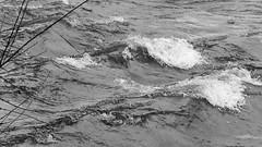 Keswick Mary Mount 02-20 (45 bw) (Big Warby) Tags: davidwarburton bigwarby landscapes floods greatbritain unitedkingdom uk lakedistrict cumbria derwentwater jetty