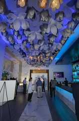 2019-029 08 United 51Fifteen Party (Chrisinkingwood) Tags: tripadvisor uniitedairlines dining party