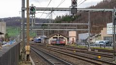 Sissach: something going at the old depot (1/2) (jaeschol) Tags: bbc eisenbahn elektrischelokomotive europa europe kantonbaselland kontinent lokomotive re44ii re421 re421387 saas sbb slm schweiz sissach suisse switzerland transport chemindefer railroad railway