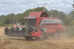 Massey Ferguson Cerea 7274 Combine Harvester cutting Winter Oats (Shane Casey CK25) Tags: massey ferguson cerea 7274 combine harvester cutting winter oats mf red agco carrigtwohill grain harvest grain2019 grain19 harvest2019 harvest19 corn2019 corn crop tillage crops cereal cereals golden straw dust chaff county cork ireland irish farm farmer farming agri agriculture contractor field ground soil earth work working horse power horsepower hp pull pulling cut knife blade blades machine machinery collect collecting mähdrescher cosechadora moissonneusebatteuse kombajny zbożowe kombajn maaidorser mietitrebbia nikon d7200