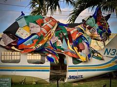 Art cat (kimbar/Thanks for 4.5 million views!) Tags: artpark wynwoodwalls art cat florida miami sculpture metal junk