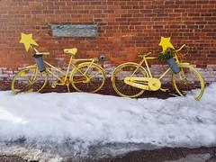 Yellow Bikes (nicolemonsees) Tags: yellowbikes bikes burlington vermont snow bicycles bricks brickwall outside outdoors winter smartphone