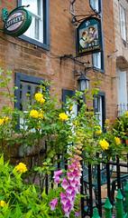 A Board Inn (Adam Swaine) Tags: inns villageinns englishinns cumbria markettowns towns northeast england english englishvillages britain british pubsigns villagepubs rural ruralvillages adamswaine 2109 walks buildings applebyinwestmorland edenvalley