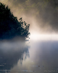 Golden fog (josemcalvol) Tags: river maullin fog golden water reflections landscape