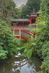 Photo of Chinese Garden - Biddulph Grange  (National Trust)