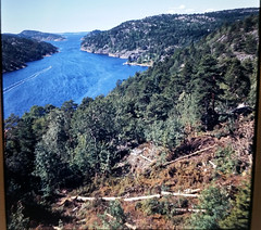 EuroUK1969No68 (mat78au) Tags: from view highest bridge norway 1969