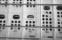 (Josh Sinn) Tags: joshsinn minnesota olympucstylusepicmjuii 35mm film blackandwhite kodak trix 400 pigs livestock
