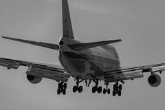 British Airways 747-400 on short final at LAX (beltz6) Tags: 747 747400 boac britishairways gbygc lax klax boeing boeing747 losangelesinternationalairport boeing747400 airplane aviation landing avgeek britishoverseasairwayscorporation nikonfxshowcase