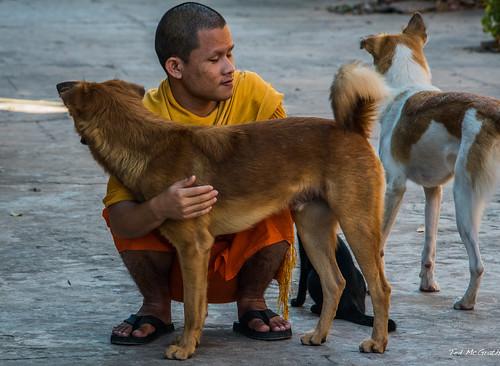 2019 - Cambodia - Siem Reap - Wat Preah Prom Rath Monastery Monk