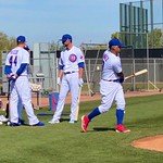 Chicago Cubs 2020 Spring Training Gallery 6