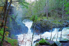 The Hermitage (eric robb niven) Tags: ericrobbniven scotland dunkeld hermitage landscape river braan landscapes walking