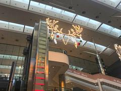 IMG_1822 (2) (Vyv Toms) Tags: southampton christmasdecorations