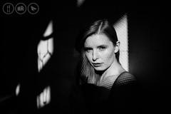 Photo of Shadowplay
