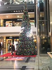 IMG_1820 (2) (Vyv Toms) Tags: southampton christmasdecorations