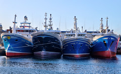 Photo of Rows of Boats 3