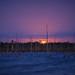 February 2020 Supermoon rising over marsh in Fred C. Babcock/Cecil M. Webb Wildlife Management Area near Punta Gorda, Florida