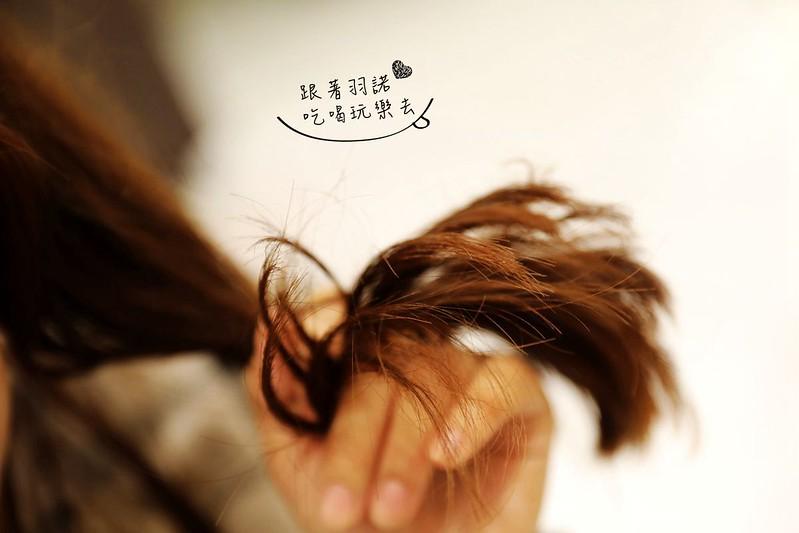 板橋髮廊沙龍推薦Qdn hair salon板橋美髮017
