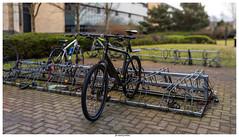 Photo of Day 50 - Bike