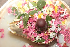 "Maha Shivaratri 2020 celebration in Vidyalaya (64) <a style=""margin-left:10px; font-size:0.8em;"" href=""http://www.flickr.com/photos/47844184@N02/49568231763/"" target=""_blank"">@flickr</a>"
