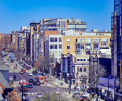 2020.02.22 DC People and Places, Washington, DC USA 053 49201