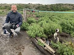 Beagle Channel, Argentina, January 2020