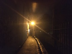 Photo of Alone in the alley