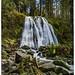 Cascade de la pissoire (Vosges)
