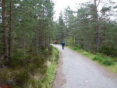 Photo of 12 Ryvoan Pass Sponsored Walk 060615