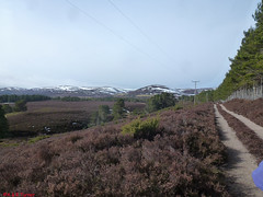 Photo of 6 South of Inverlaidnan Hill 070315