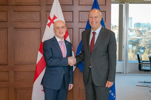 WIPO Director General Meets Georgia's Foreign Minister