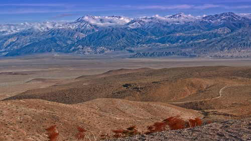 Road to Death Valley 8577 A