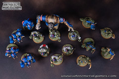 Bloodbowl Orcs-2