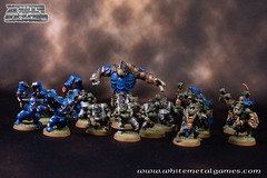 Bloodbowl Orcs-1