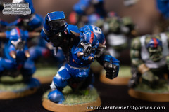 Bloodbowl Orcs-5