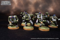 Bloodbowl Orcs-7