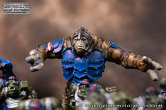 Bloodbowl Orcs-6