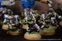 Bloodbowl Orcs-3