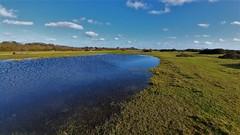 Photo of Pond on Greenham Common