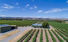 Matthews Vineyard, 139 Little Road, Willunga SA