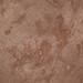 Tetrapod footprints (Sangre de Cristo Formation, Lower Permian; El Pueblo site, Upper Pecos Valley, New Mexico, USA) 1
