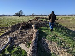 Photo of River Tweed walk at Coldstream, Feb 2020