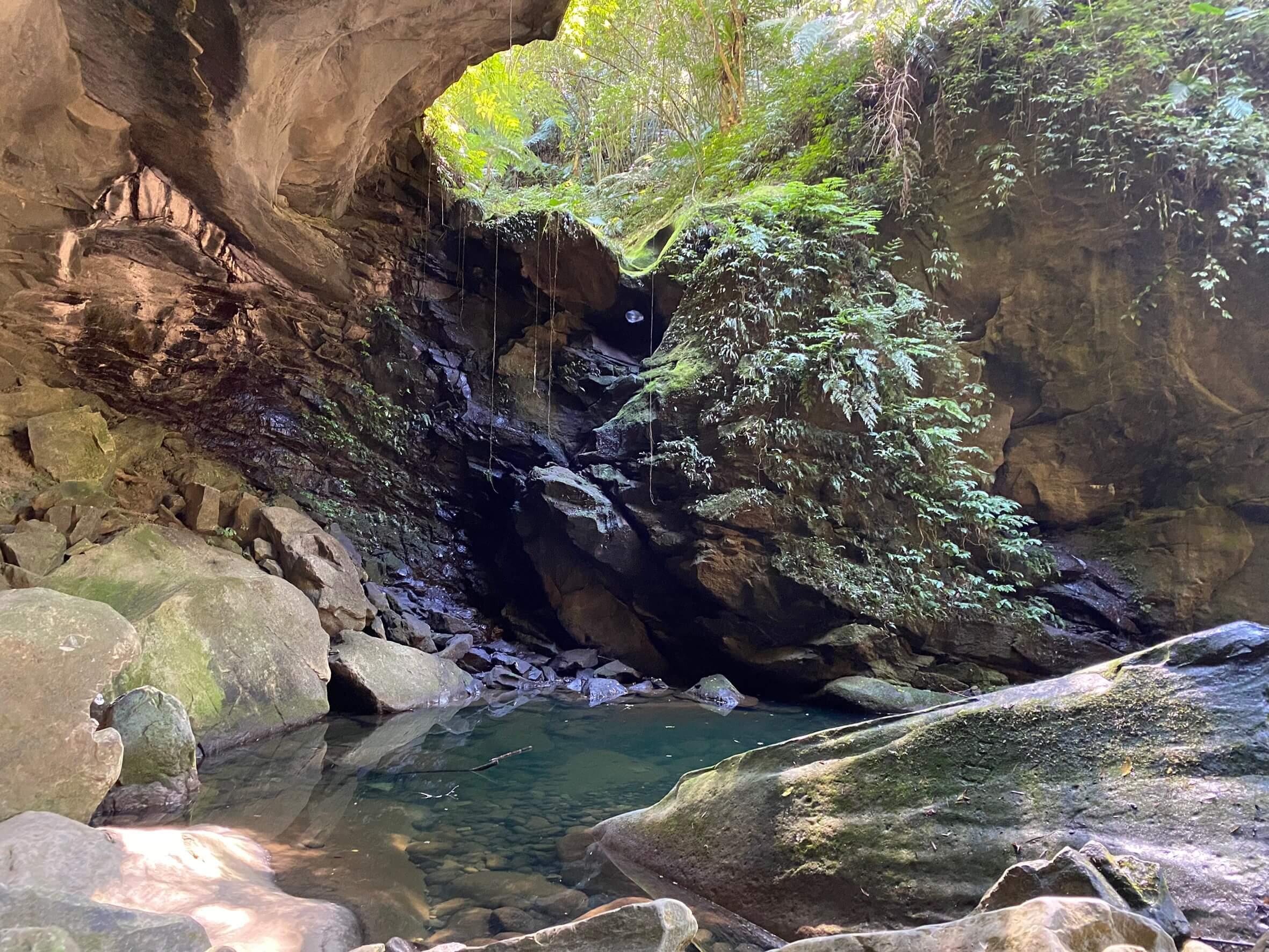 秘境三民蝙蝠洞瀑布/觀音洞步道 / 走入大自然來場森林浴