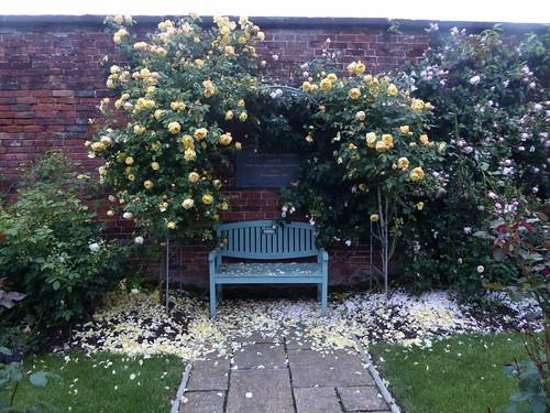 June - rose garden