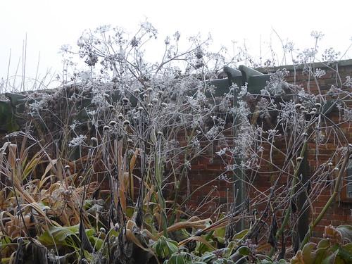 November - Sensory frosting