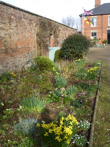 February - herbaceous border